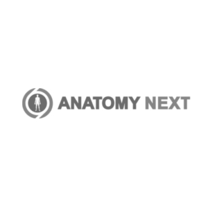 anatomy, learning, augmented reality